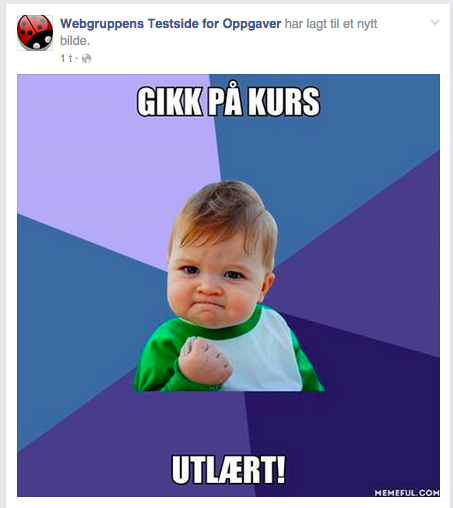 Eksempel på bildepost på Facebook